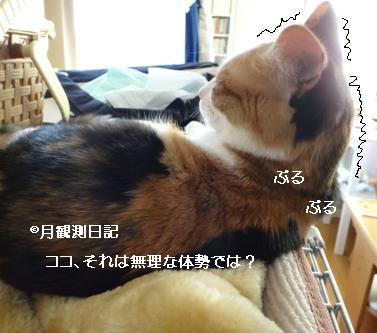 20130509tsuki1.jpg