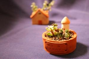ミニ鉢 my garden