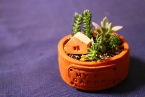 ミニ鉢my garden