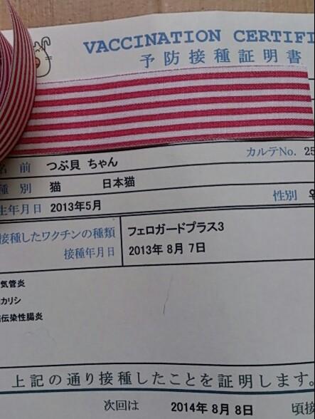 DSC_0252-1.jpg