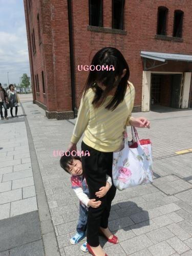 CIMG2535_convert_20130529204610.jpg