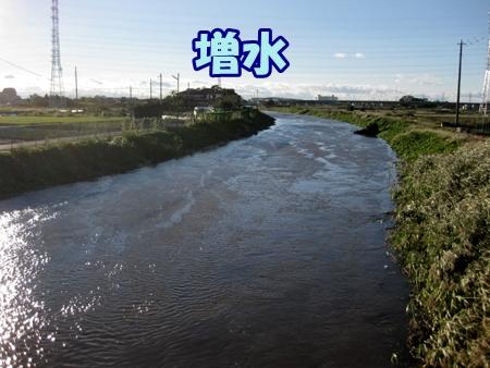 2_201310161909527aa.jpg