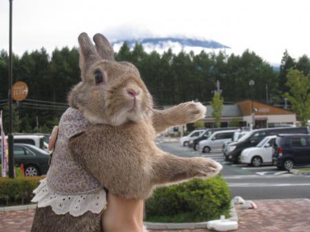 あれも富士山?
