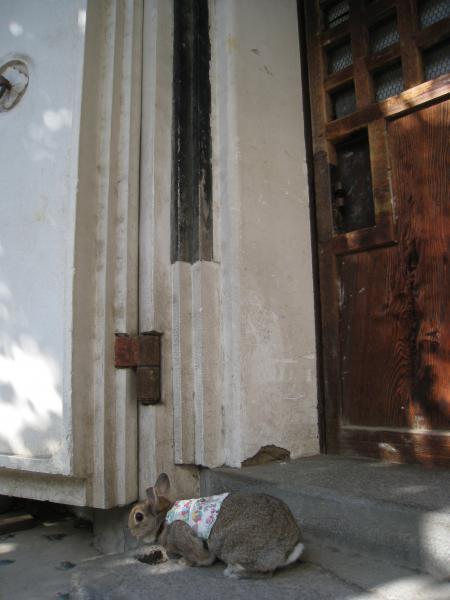 蔵の扉は厚いね~!