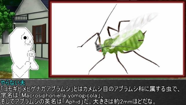ゆっくり霊夢とやる夫が学ぶ 昆虫大百科 part4