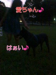 うめめのいつもワンコと一緒ブログ-110716_1915~04_0001.jpg