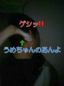 うめめのいつもワンコと一緒ブログ-110904_0205~01_0001.jpg