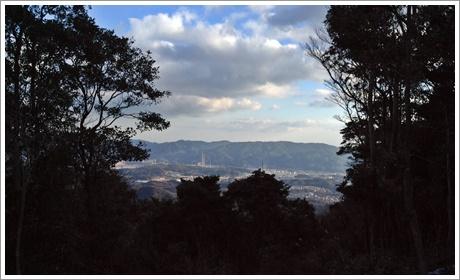 taniyama027.jpg