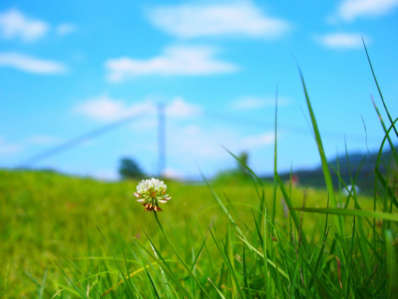 2013_07_07_02.jpg