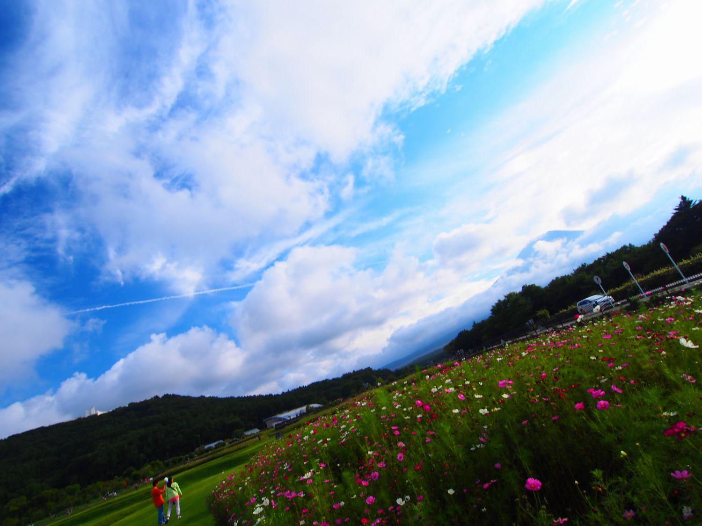 2013_09_15_03.jpg