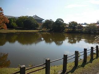 yamatoa44.jpg