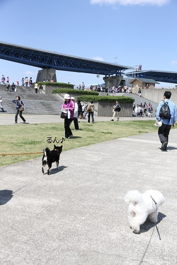 ひたち海浜公園 帰り道編 (2)