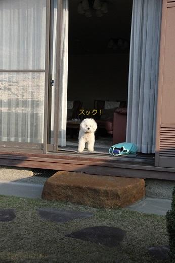 お見送りまでのフロー (1)
