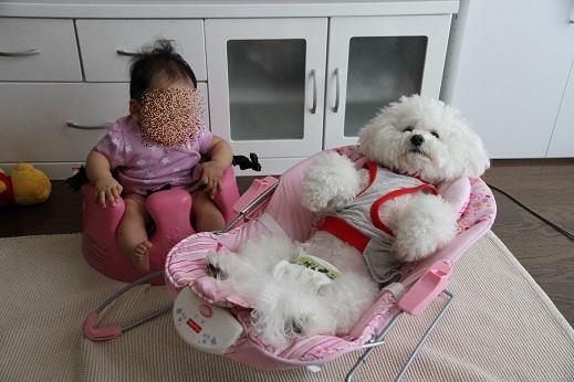 赤ちゃんごっこ その1 (3)