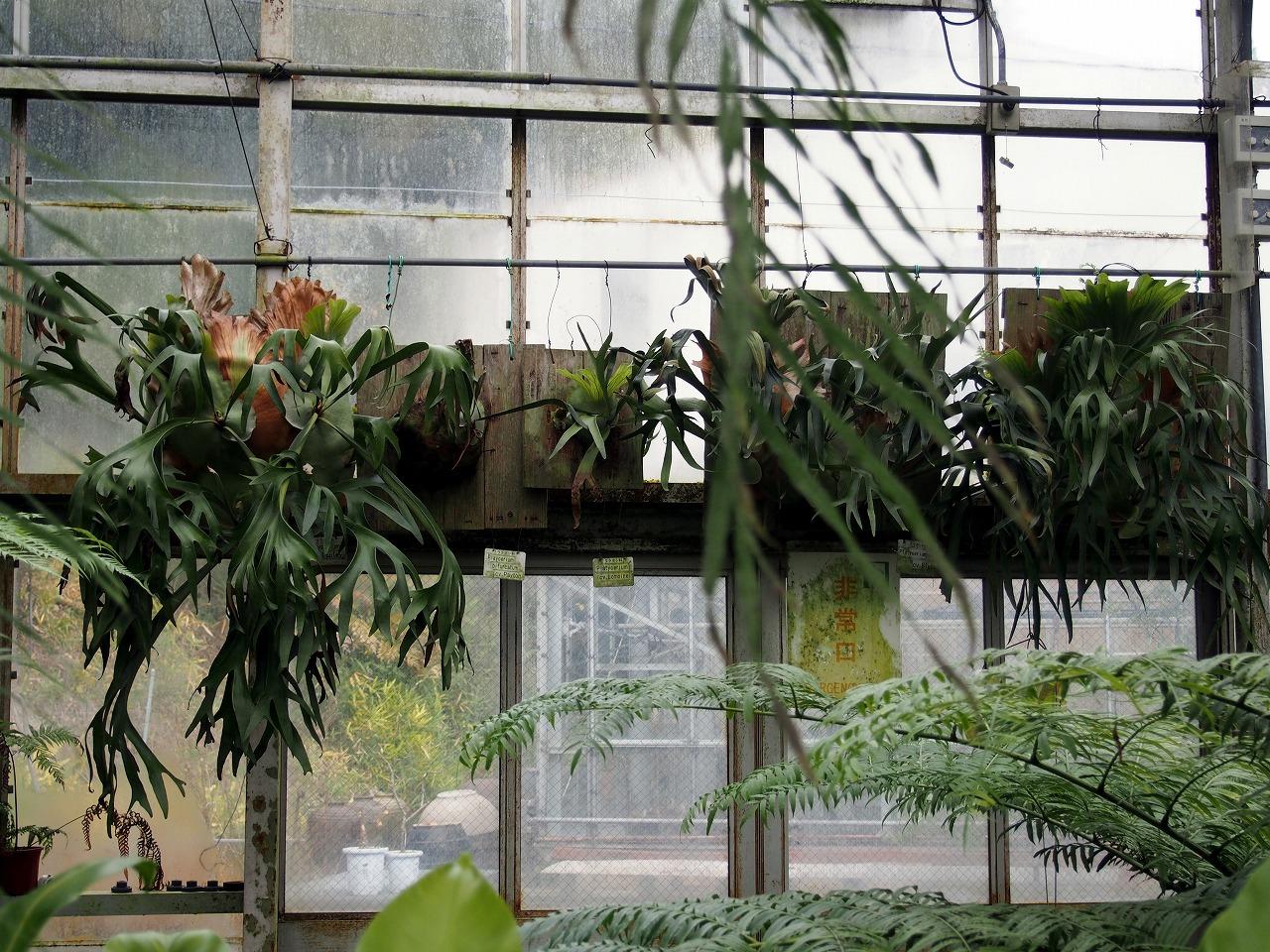 BotanicalGarden115_20141115.jpg