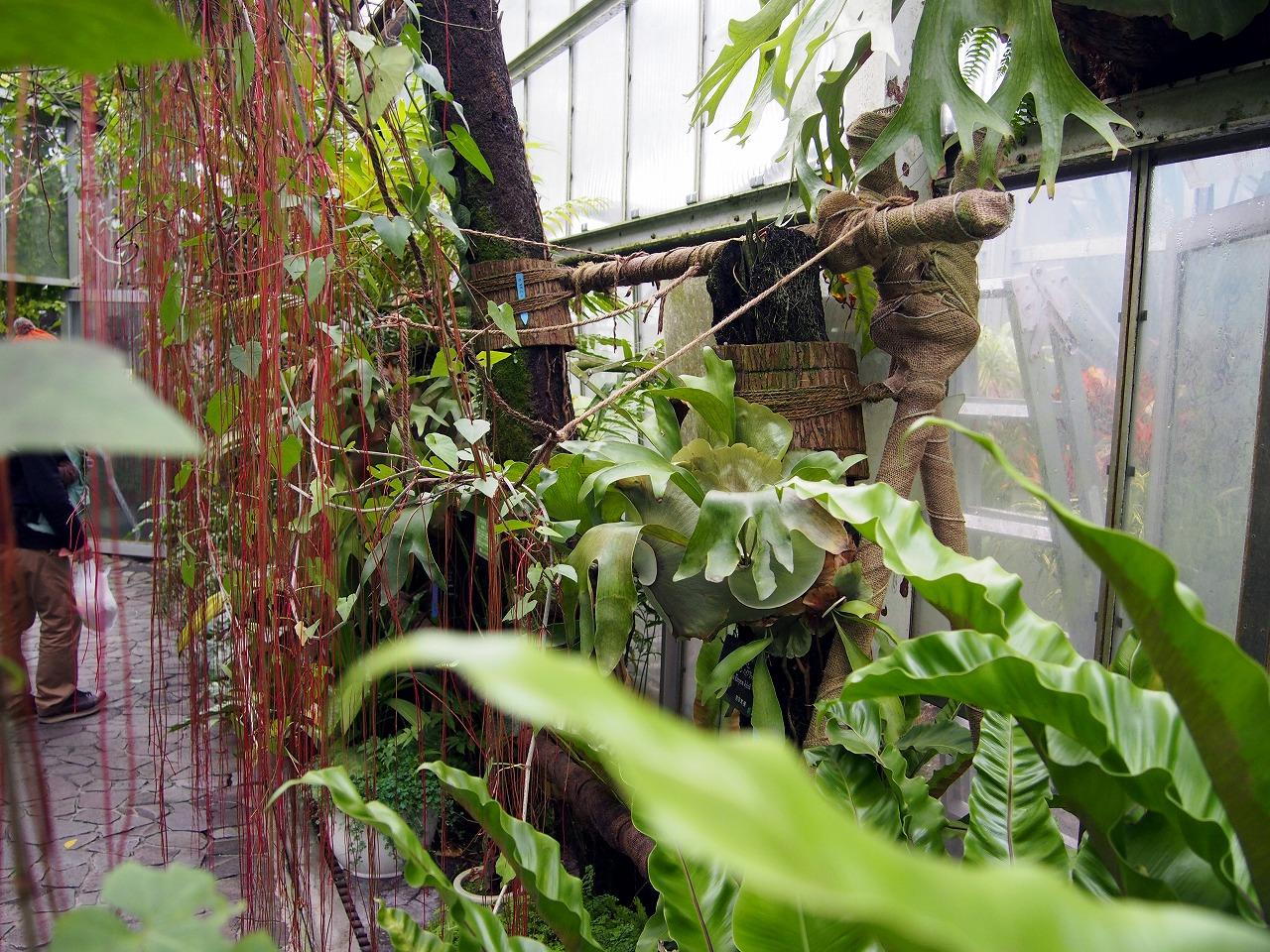 BotanicalGarden117_20141115.jpg