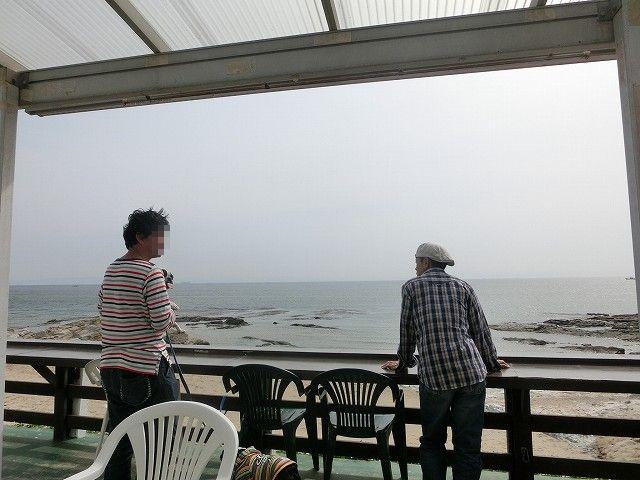 美浜ドッグラン