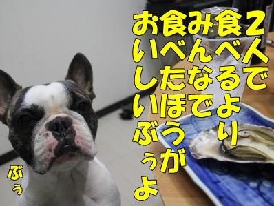 9_2014020516455301f.jpg