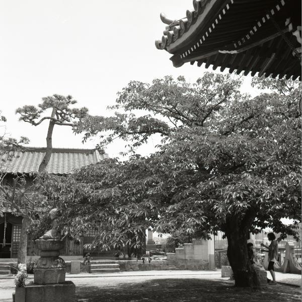 20130525_Onomichi_Rolleiflex28F_Acros.jpg
