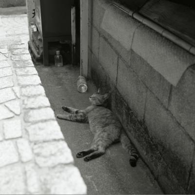20130525_Onomichi_Rolleiflex28F_Acros_4.jpg