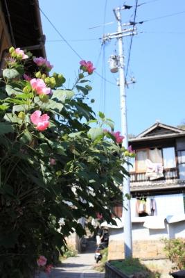 20131013_Onomichi0013.jpg