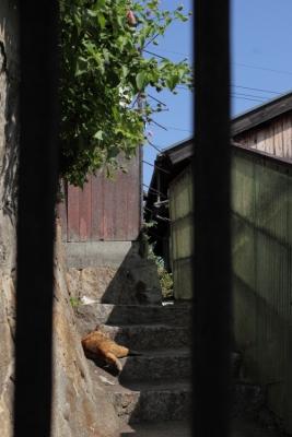 20131013_Onomichi0018.jpg