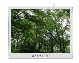 image_20130710081248.jpg