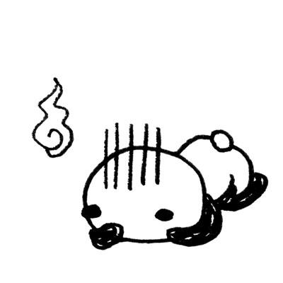 panda-009.jpg