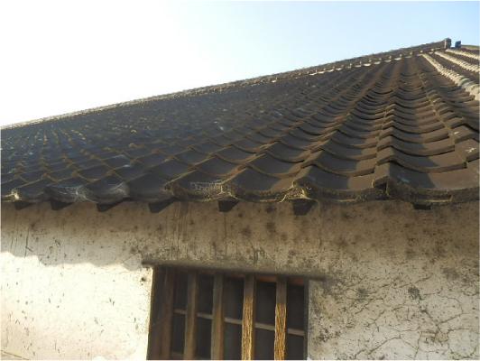 醤油蔵の屋根