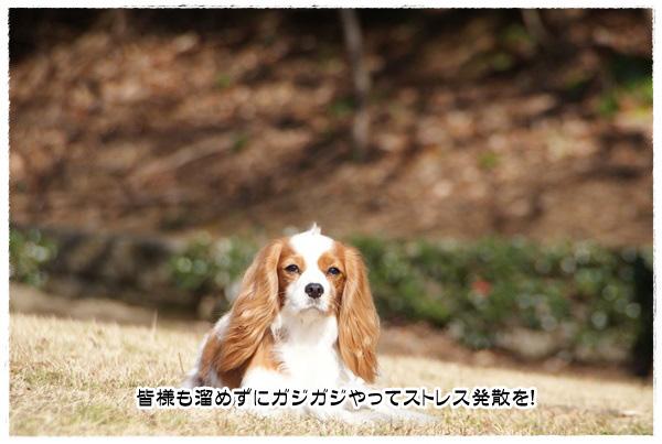 20140123_082.jpg