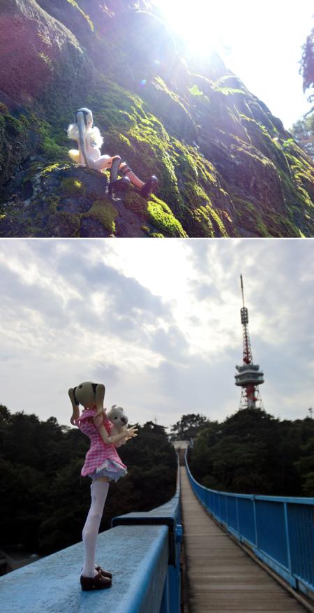 26_11_2 八幡山公園