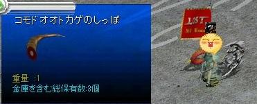 コドモオオトカゲのしっぽ