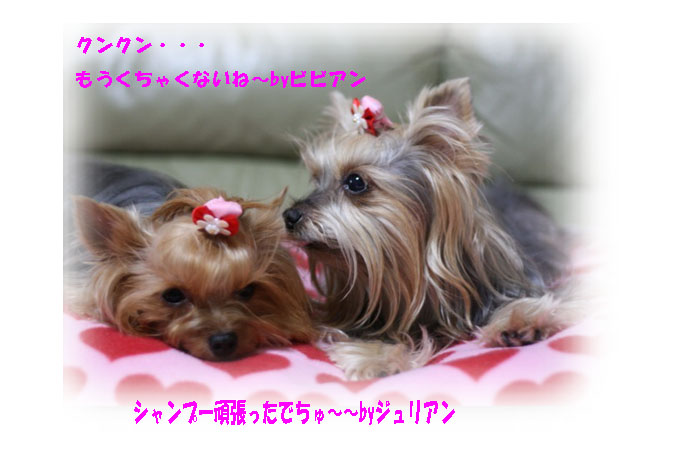IMG_4592c.jpg