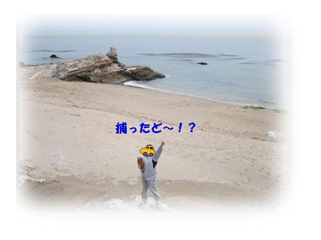 IMG_6807a.jpg