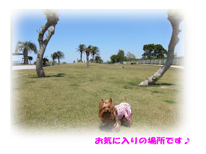 IMG_7097.jpg