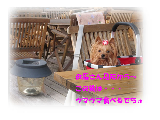 IMG_7174.jpg