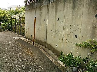 kamihonn2-4.jpg