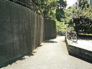 kamihonn3-6-2.jpg