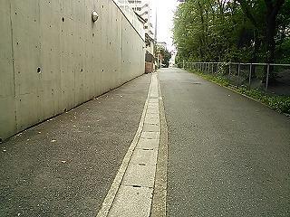 kamihonn4-2.jpg