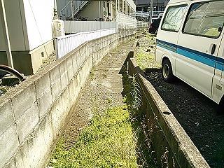 kamihonn8.jpg