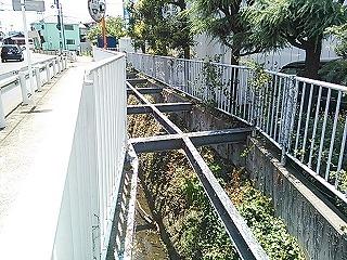 kawawa1-1.jpg