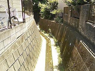 kawawa1-11.jpg