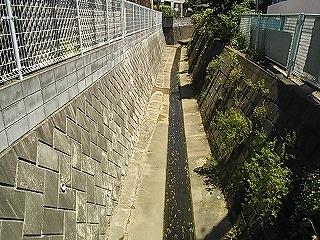 kawawa1-6.jpg