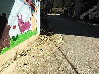 nagaoji6.jpg