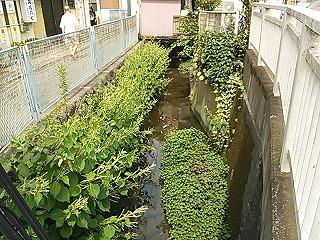 nakayama1-1.jpg