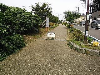 nakayama1-5.jpg