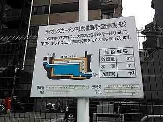 nakayama1-7.jpg