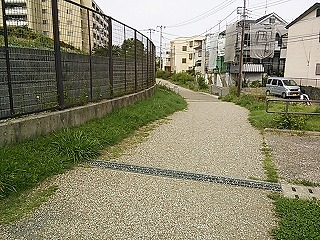 nakayama1-8.jpg