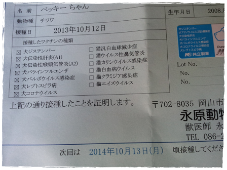 picute20131012124427.png