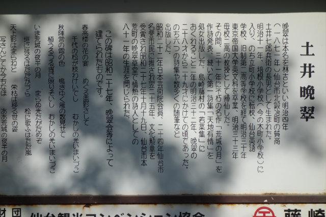 DSC01393[1]